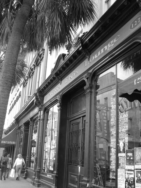 Savannah 2006 001